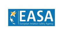 EASA ETSO C172 Strap